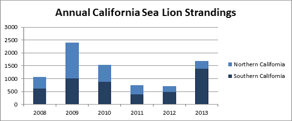 Figure 1: Annual California Sea Lion Strandings
