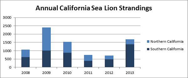 Figure 1: Annual California Sea Lion Strandings